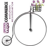 Création site ecommerce Lyon