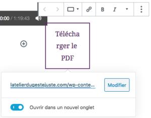 Changer lien PDF