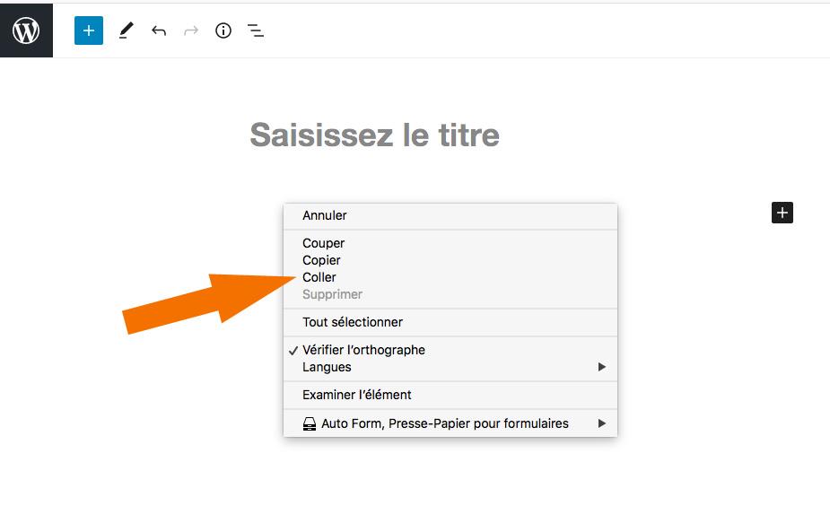 Intégrer texte dans édtieur WordPress